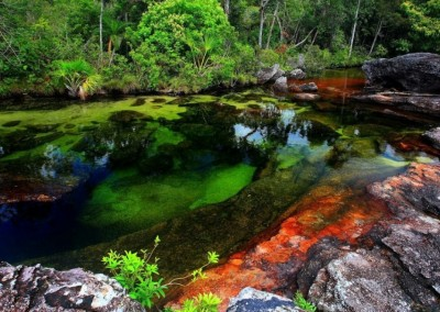Caño Cristales River - Colombia 1